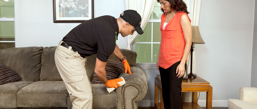 Pflugerville, TX carpet upholstery cleaning