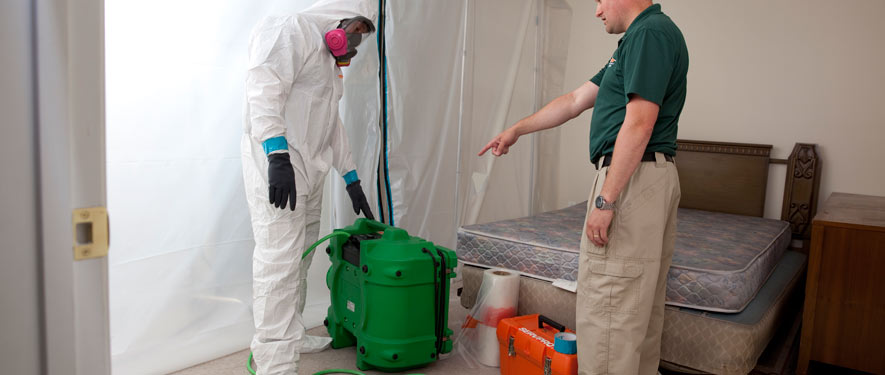 Pflugerville, TX mold removal process